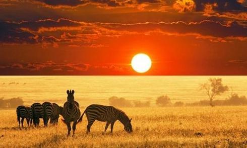 肯尼亚旅行攻略