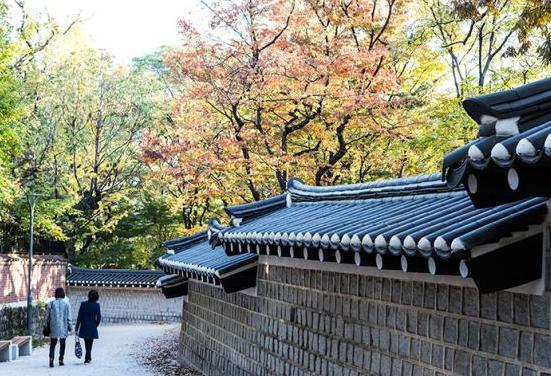 韩国旅游转换插头