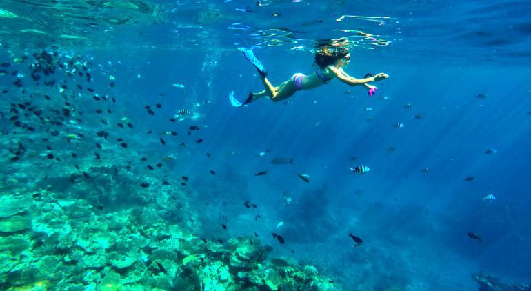 瓦努阿图浮潜
