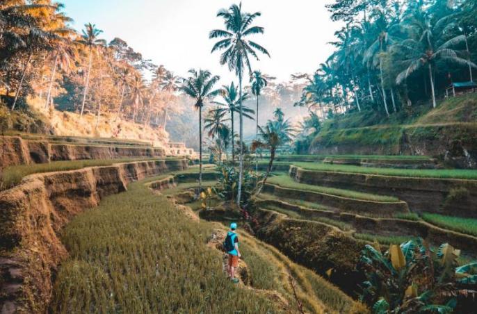 印度尼西亚巴厘岛旅行指南